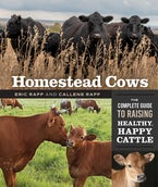 Homestead Cows