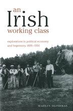 An Irish Working Class