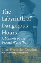 The Labyrinth of Dangerous Hours