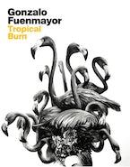 Gonzalo Fuenmayor: Tropical Burn